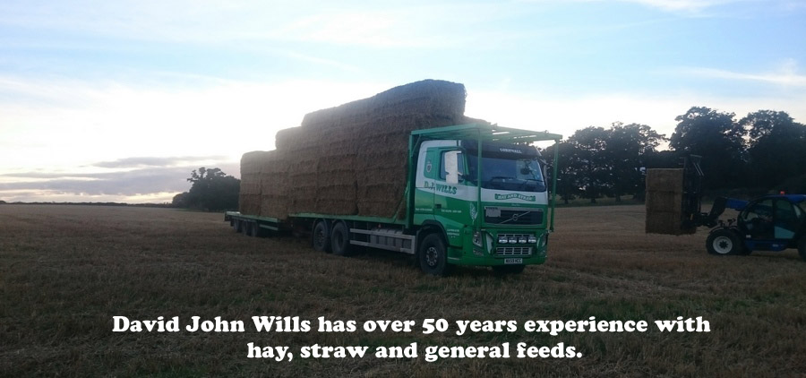 David John Wills has over 50 years experience with hay, straw and general feeds