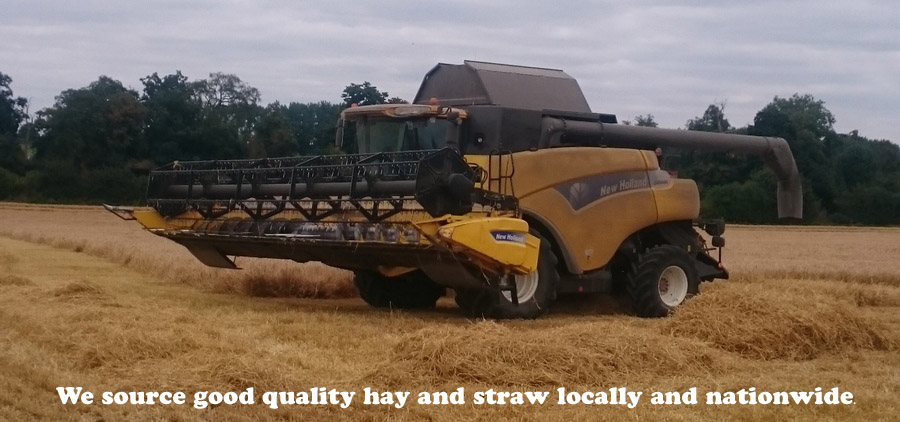 We source good quality hay and straw locally and nationwide