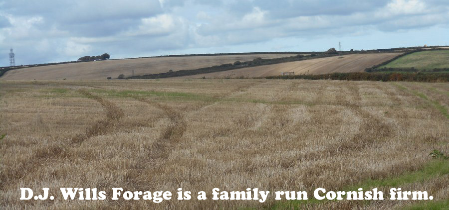 D.J Wills Forage is a family run Cornish Farm